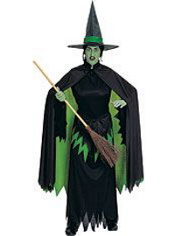 Wizard of Oz Wicked Witch of the West Costume Adult